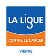 logo-comite-ligue-vienne-coul-7ddf371990