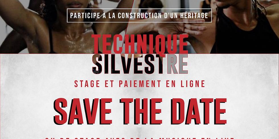 Technique Silvestre - Online Workshop Fundraiser