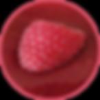 Fruit-Puree.png