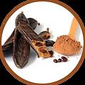 santé coupe faim nutrition snack gourmandise sans sucres diabétique fruit