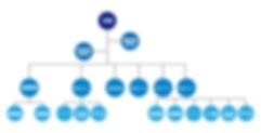 組織図_アートボード 1.png