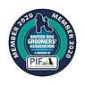 PIF-BDGA 2020 png.png