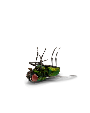Insecticides_edited.png