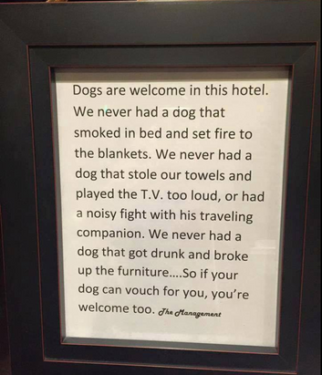 Hotel Dogs Policy