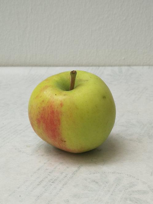 Alte Apfelsorte (allergikerfreundlich)