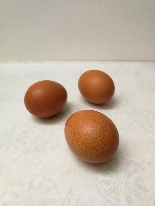 Eier, Bruderhahn