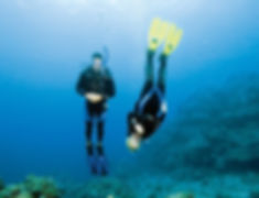 Scuba divers practicing neutral buoyancy mid water