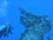 Picture of scuba diver by coral covered shipwreck
