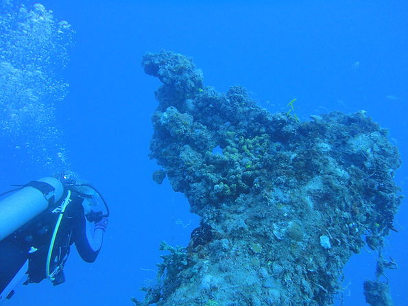 Scuba diver by a coral reef