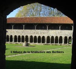 Herbiers_Grainetière_B