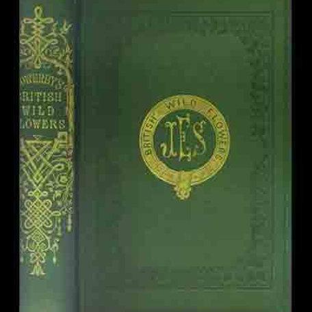 British Wild Flowers / J. E. Sowerby