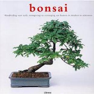 Bonsai / C. Coussins