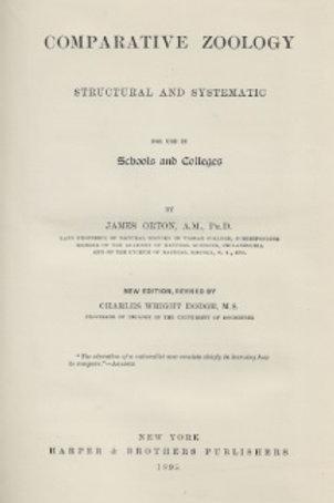 Comparative zoology / J. Orton