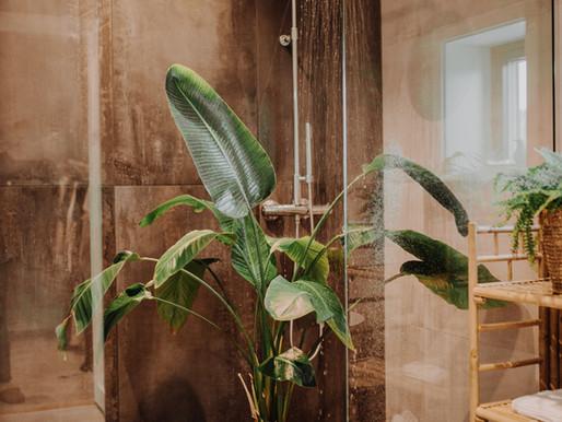 Sjekkliste for triste planter