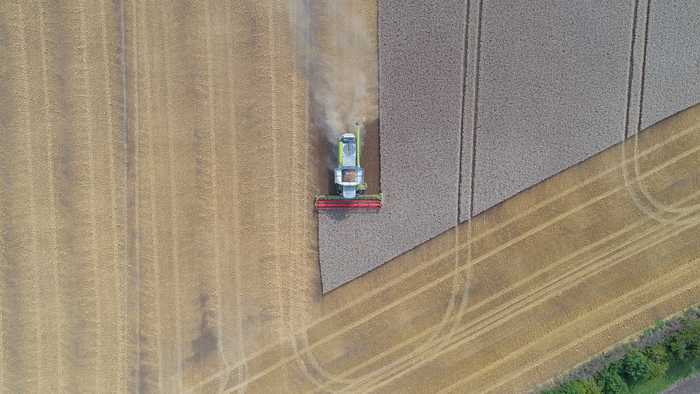 combine harvesting wheat aerial view