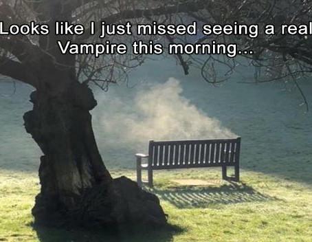 Early Bird Catches the Vampire
