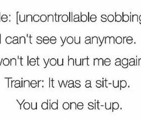 Me vs. Trainer