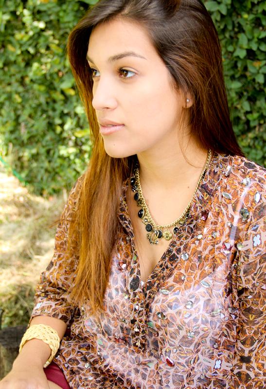 Outono 2013