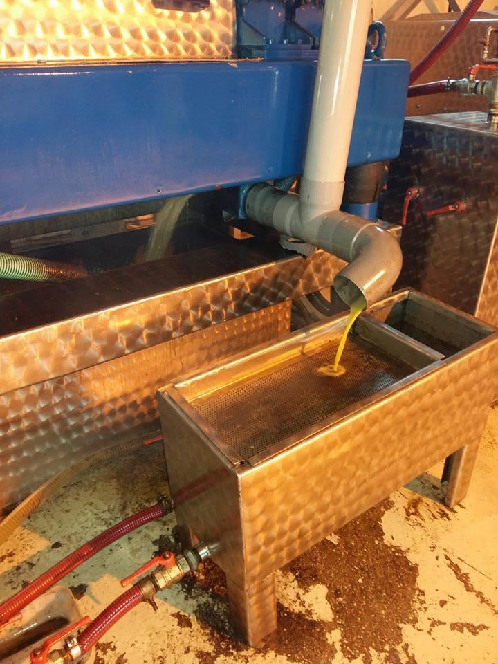 Η διαδικασία παραγωγής ελαιόλαδου