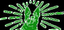 Transparent_DD_logo_geen_kader_edited_ed