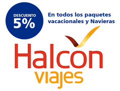 HALCON.png
