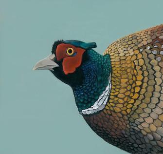 Pheasant (1).jpg
