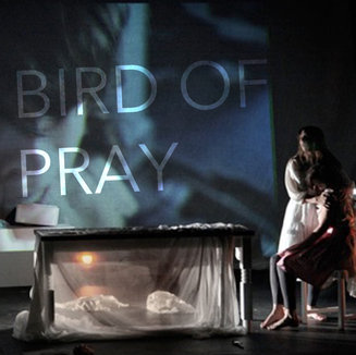 BIRD OF PRAY