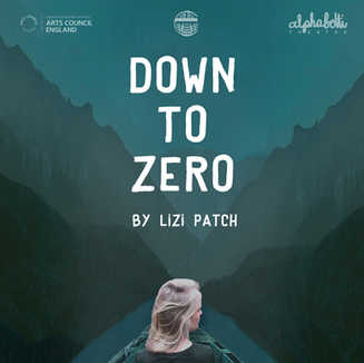 DOWN TO ZERO by Lizi Patch
