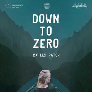 DOWN TO ZERO by Lizi Patch