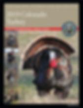 TurkeyBrochure.jpg