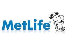 metlife-icon-31.jpg
