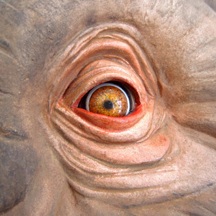 Mammoth head for a Museum: Eye detail (epoxi putty)