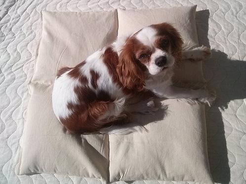 Jastuk od heljde za pse