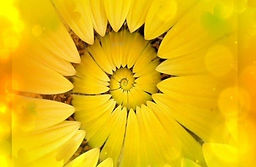 Solar-Plexus-Manipura-Chakra-Activation-