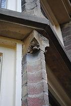 detail Pastorie_klein.jpg