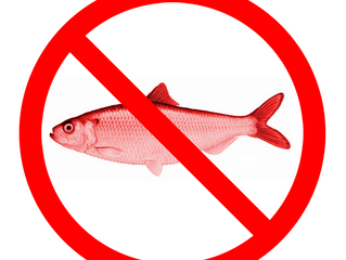 God is a Red Herring