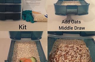 Smaller Darkling Beetles Mealworm Breeding Kit Set Up Mealworm Farming