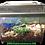 Thumbnail: Small Fruit Beetle Grub Starter Kit