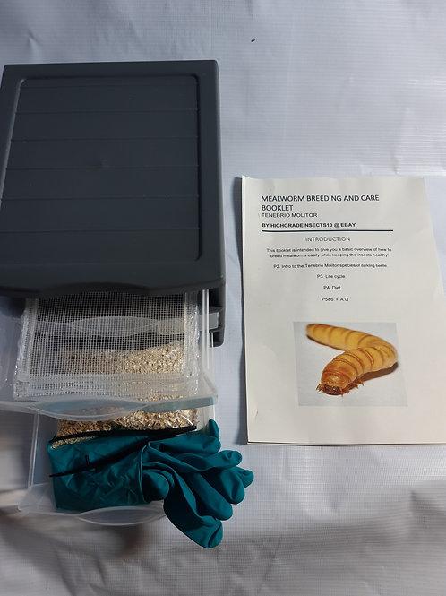 12L Mealworm Breeding Kit