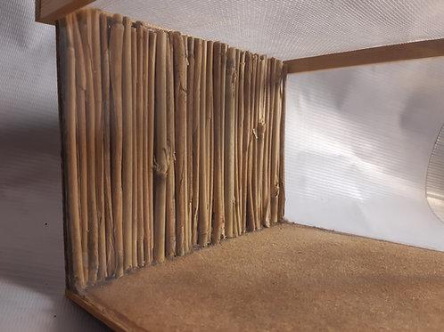 Medium Invertebrate Vivarium With Custom Real Bamboo Background