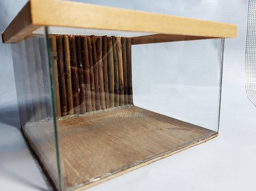 Small Invertebrate Vivarium With Custom Real Log Background