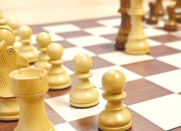 Schachkurs Level 2 (10 Einheiten)
