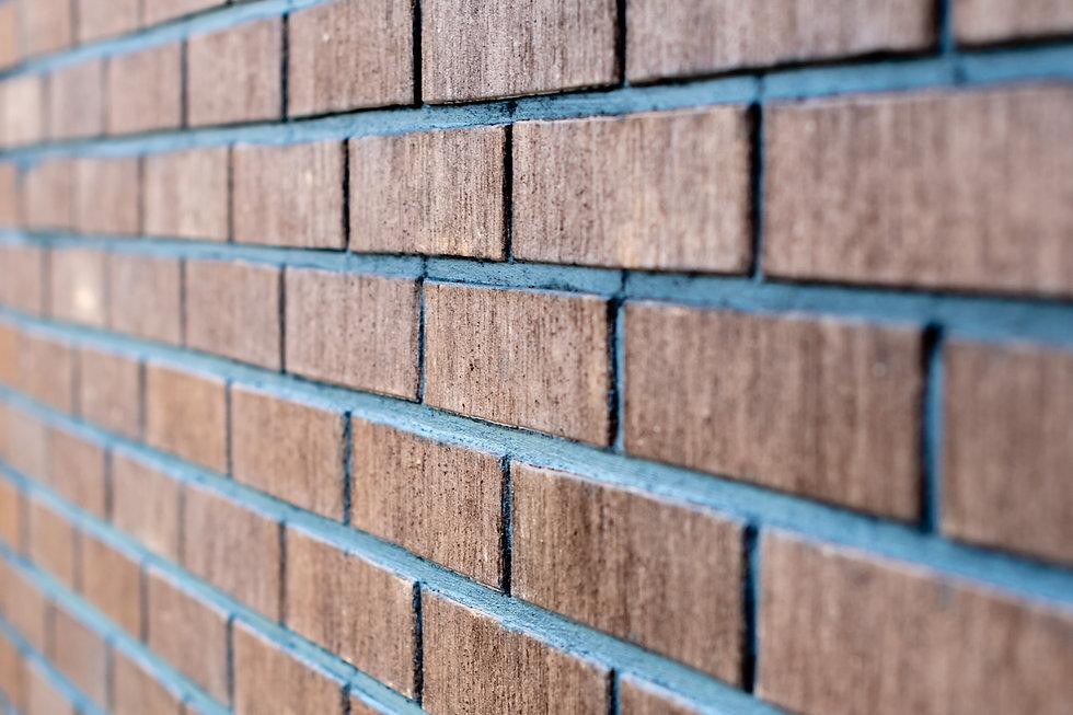 selective-focus-close-up-photograph-wall