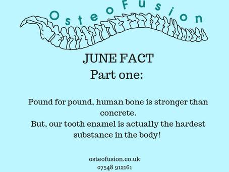 OsteoFact : Human strength