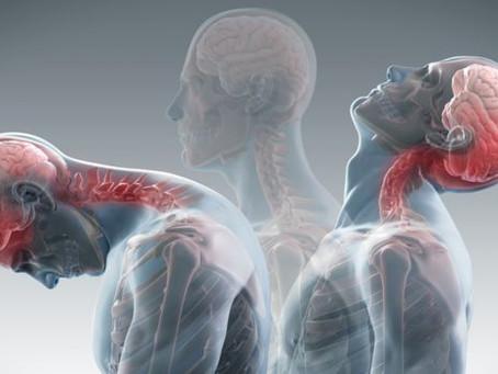 Mid Week MOT: Pain in the neck - Whiplash