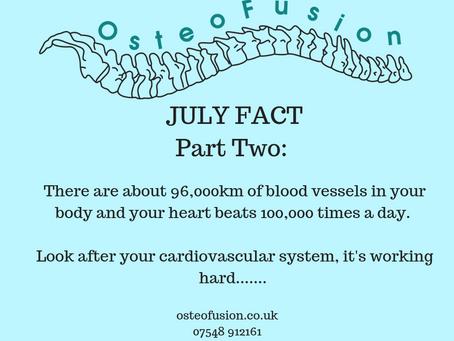 OsteoFact : Cardio nuggets