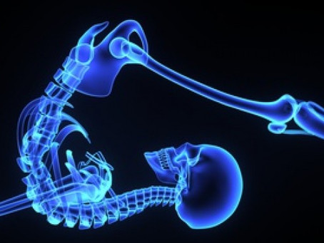 OsteoBlog: The Spinal Disc