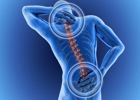 OsteoBlog: Slipped Disc?