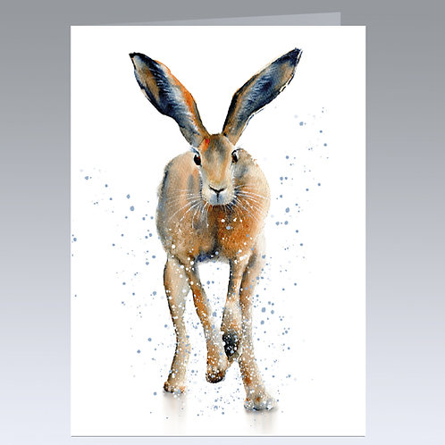 Puddle Jumper (hare) card