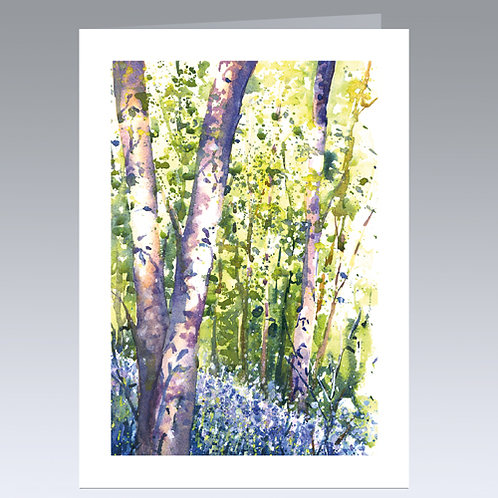 Sunlit Bluebells card